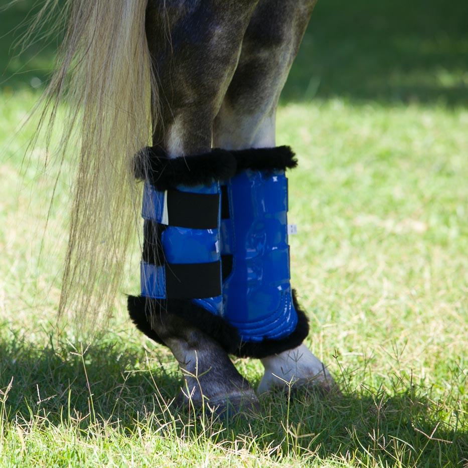 horse-boots-dressage.jpg